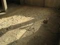 museo-archeologico-acqui-terme-impianto-via-cassino-3